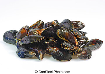 Closeup from raw mussels seafood as Background
