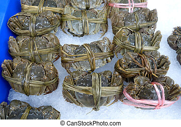 Raw shanghai hairy crab