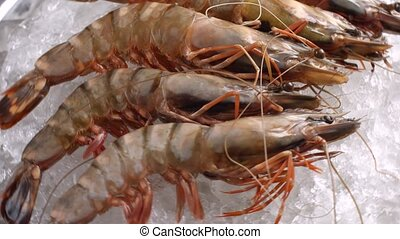 Raw shrimps lying on ice. Shrimps of brown color. Snack...