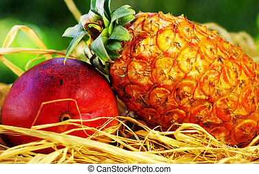 Raw tropical fruits, pineapple and mango
