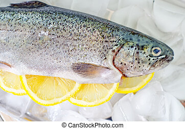 raw trout