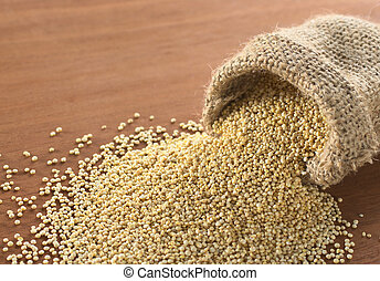 Raw white quinoa grains in jute sack on wood. Quinoa is grown in the Andes and is valued for its high protein content and nutritional value (Selective Focus, Focus on the quinoa in the front sack opening)