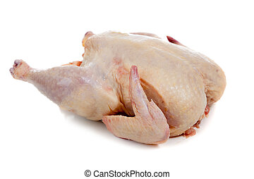 Raw, whole chicken on a white background