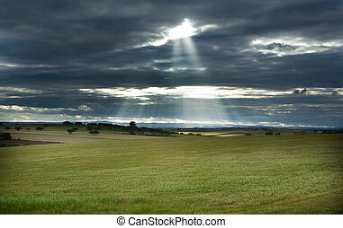 Ray of light over green fields