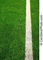 raya, campo, futbol, blanco