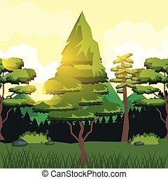 rayons, coloré, soleil, forêt, fond, vallée, paysage