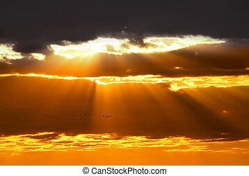 rayons soleil