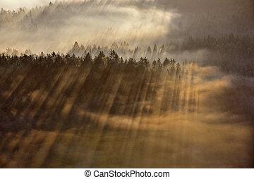 rayons, sur, brouillard, suisse, bohémien, levers de soleil