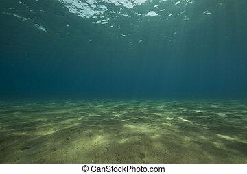 rayos, océano