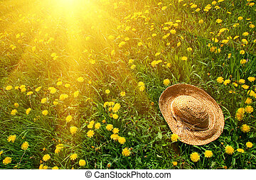 Rays of sun on green grass with straw hat