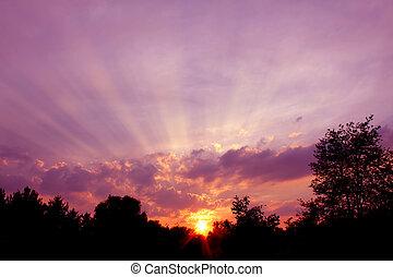 Rays of Sunlight in Illinois