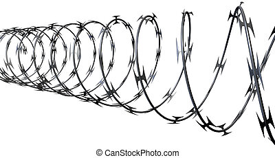 Razor Wire Perspective - A coil of razor wire on an isolated...