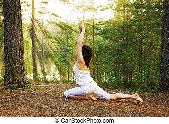 re, posa yoga, piccione, fornito gambe, uno