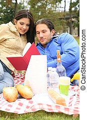 Reading Book On Picnic Trip