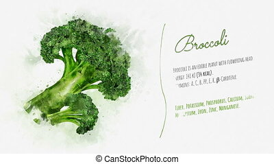 Ready animation about the benefits of Broccoli - Animation...