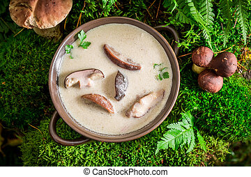 Ready to eat boletus cream made of noble mushrooms