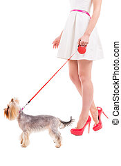Ready to go walkies. Side view cropped image of woman in white dress and heeled shoes walking with her small dog against white background