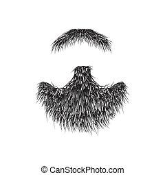 realístico, barba, isolado, branco, fundo, vetorial, illustration.