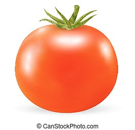 real 3d tomato on a white background