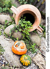 Real Baby Pumpkin and Garden Pottery Decoration