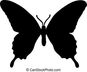 Real Butterfly Silhouette