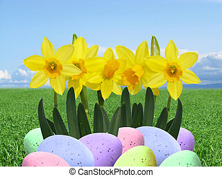 real easter eggs and daffodils