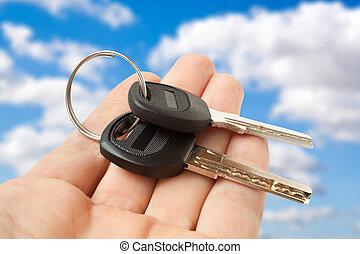 keys on a palm