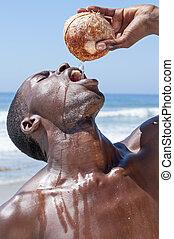 real, fresco, água coco