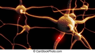 Real Neuron synapse network with red electric impulse ...