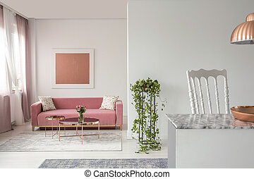 Real photo of a pink couch, plant in a living room interior and open space kitchen island