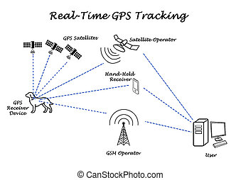 real-time, 追跡, GPS