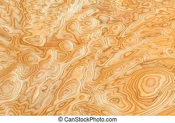Real wood grain texture - Close up real burl wood grain...