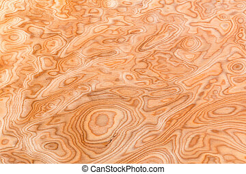 Close up real burl wood grain texture background