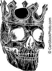 reale, scheletro, cranio, umano, re, corona