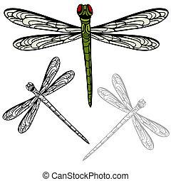 realista, libélula