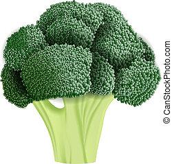realista, vector, bróculi, ilustración