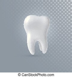 Realistic 3d tooth isolated on transparent background....