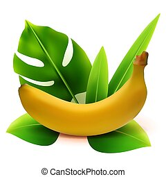 Realistic 3d vector banana fruit with leaves isolated on white background. Vector illustration.