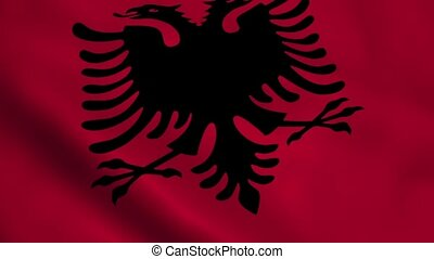 Realistic Albania flag waving in the wind. Seamless looping.