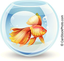 vector illustration of a goldfish i