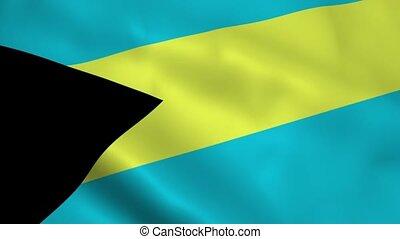 Realistic Bahamas flag