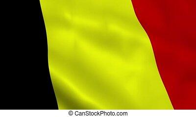 Realistic Belgium flag