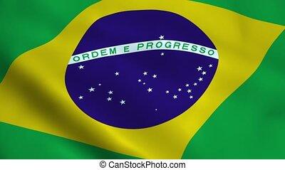Realistic Brazil flag