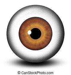 Realistic Brown Eyeball