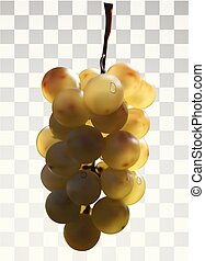 Realistic bunch of grapes on a transparent background.