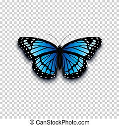 Realistic butterfly icon. perfect for your presentration. ...