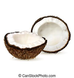 Realistic coconut isolated