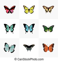 Realistic Copper, Tiger Swallowtail, Archippus And Other Vector Elements. Set Of Beauty Realistic Symbols Also Includes Butterfly, Swallowtail, Malachite Objects.