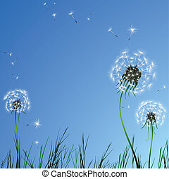Realistic dandelion grass blue sky. Vector illustration.