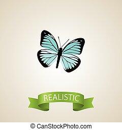 Realistic Demophoon Element. Vector Illustration Of Realistic Lexias Isolated On Clean Background. Can Be Used As Blue, Sky And Butterfly Symbols.